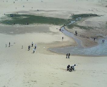image/seiwa-j-2006-06-27T18:45:15-1.jpg